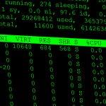 Der eigene dedicated Linux Server