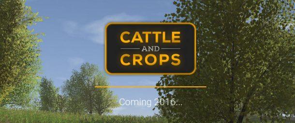 Der Release-Termin von Castele and Crops ist noch sehr vage. 2016 solls aber noch werden.