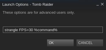 """Nach dem """"make"""" und """"make install"""" ist strangle Systemweit verfügbar. So klappt danach die FPS-Limitierung in Steam."""